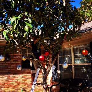Hubs hanging ornaments and lights in a tree full of bees.